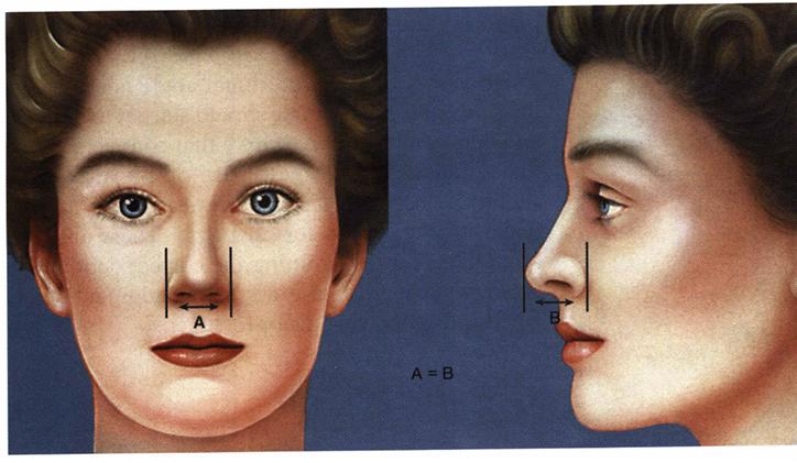 معیارهای زیبایی بینی و صورت